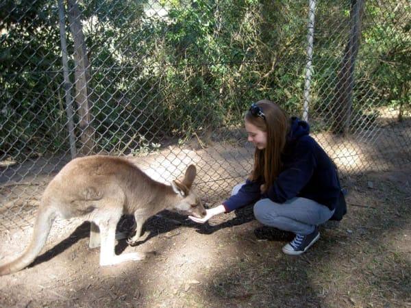 Henrike au pair australien erfahrungsbericht
