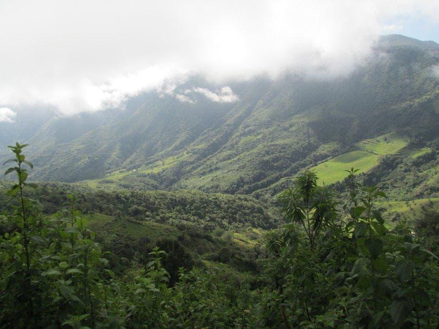 Erfahrungsbericht Freiwilligenarbeit in Ecuador von Claas