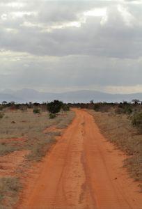 Erfahrungsbericht Volunteer in Kenya vom Imke