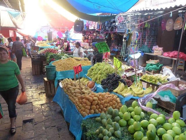 Selina Praktikum in Mexiko